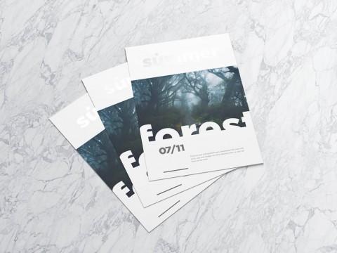 Impresión de flyers o folletos para tu reclamo publicitario